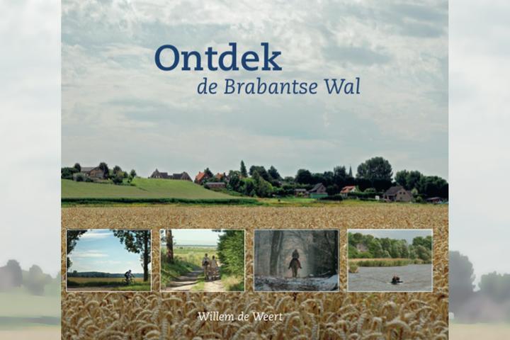Hoflezing: Willem de Weert